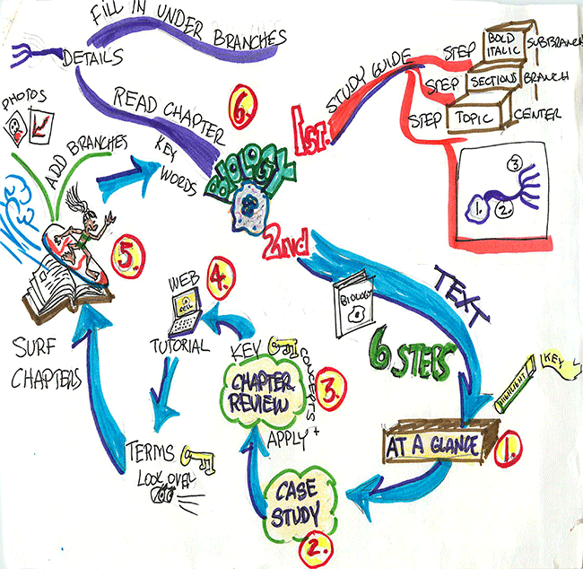 Mind map on biology